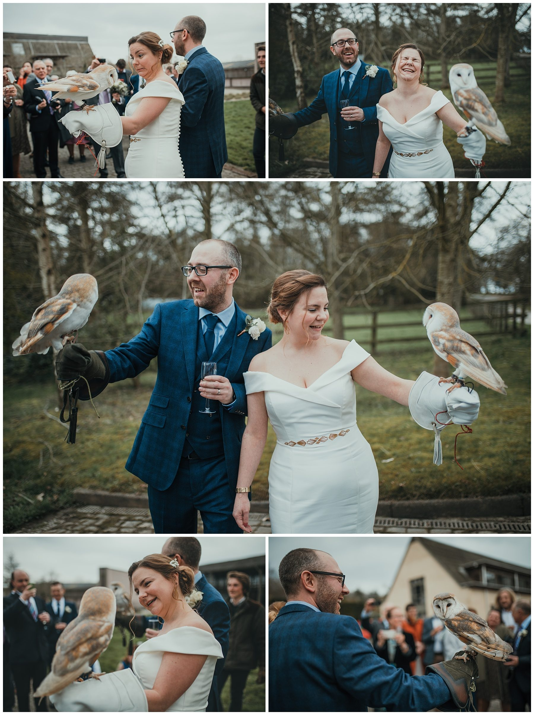 Married couple holding owls on wedding day